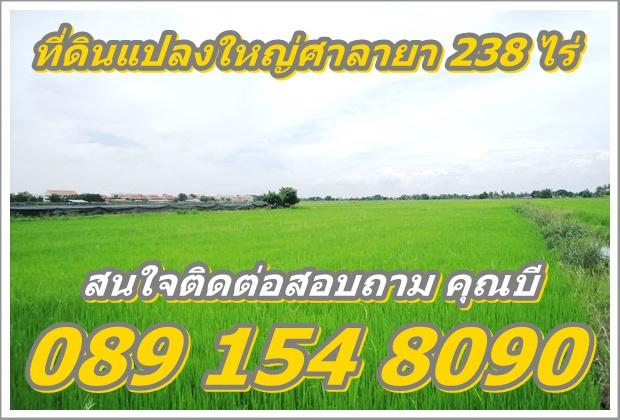 ขายที่ดินศาลายา ที่ดินแปลงใหญ่ เนื้อที่ดิน 238 ไร่ (โฉนด) ทำเลเยี่ยม ใกล้วิทยาลัยการอาชีพพุทธมณฑล จังหวัดนครปฐม