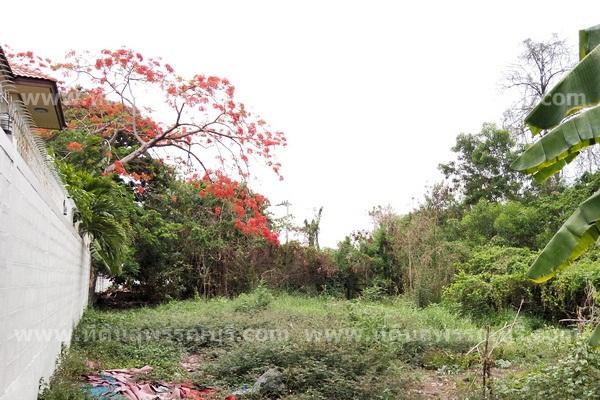 ที่ดินหมู่บ้านศรีนครพัฒนา,ที่ดินนวมินทร์24,ที่ดินถนนนวมินทร์,ที่ดินบึงกุ่ม